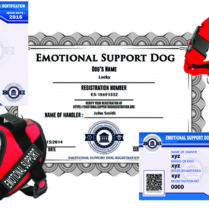 Emotional Support Dog Premium Bundle