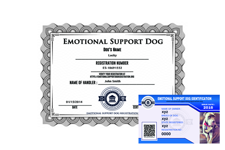 emotional support dog registration basic. Black Bedroom Furniture Sets. Home Design Ideas